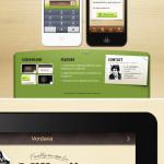 精美的iPhone,iPad及Andriod的APP网页模板和图标下载网站iconnice