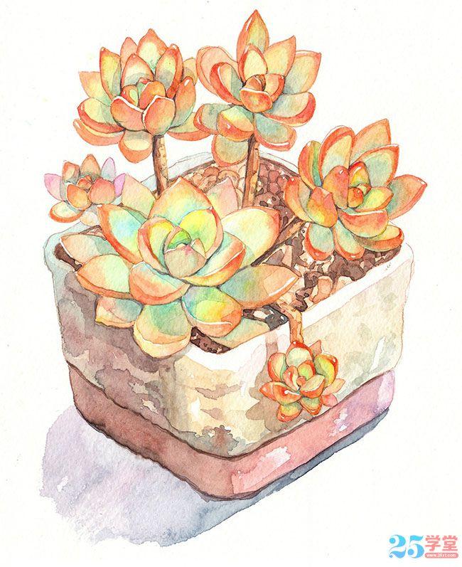 Enjoy succulent watercolor