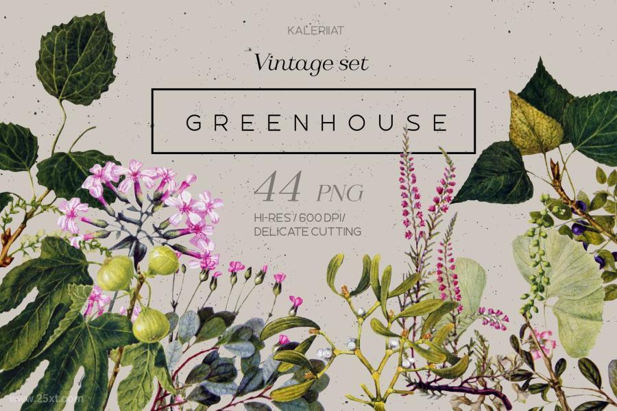 25xt-128813-GREENHOUSE-vintagebotanicalsetz3.jpg/