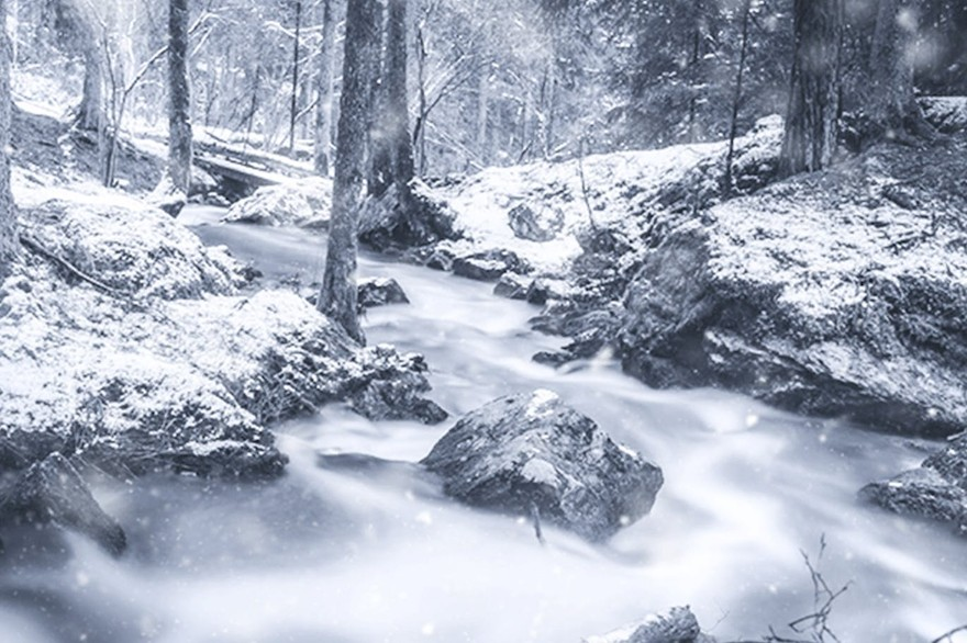 Winter Photoshop Action-4.jpg