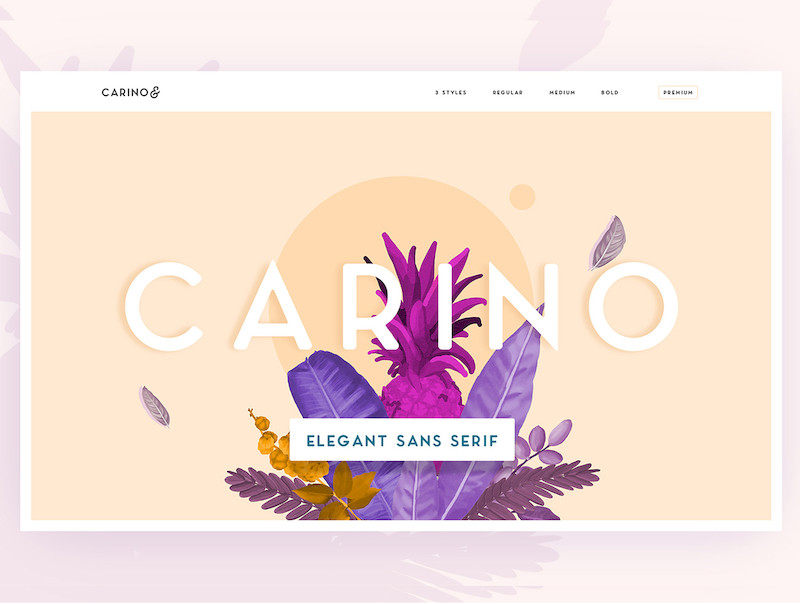 Carino - A Modern Elegant Sans-1.jpg
