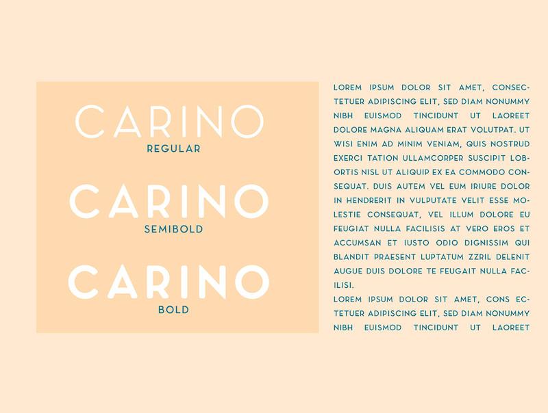 Carino - A Modern Elegant Sans-11.jpg
