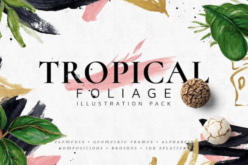 Tropical Foliage Illustration Pack-1.jpg