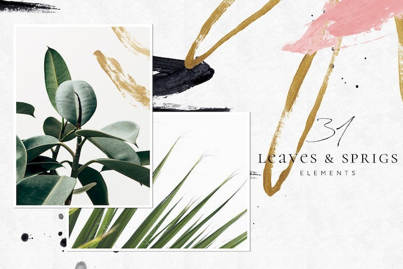 Tropical Foliage Illustration Pack-4.jpg