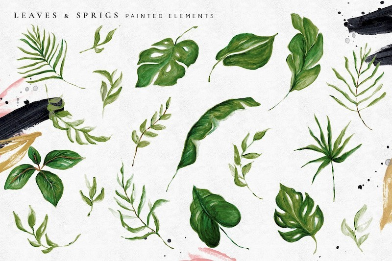 Tropical Foliage Illustration Pack-3.jpg
