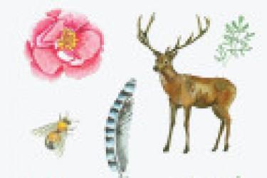 17个美丽的高品质的水彩动物PSD素材分享
