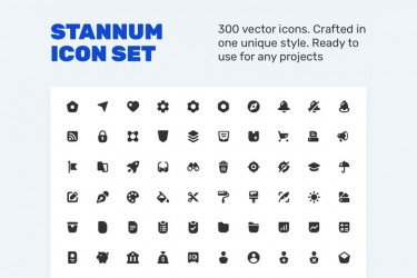 300个设计独特的实心图标素材