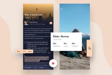 新闻博客类App中的图文排版设计欣赏