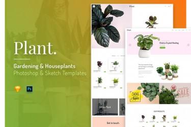 植物类电商网站页面设计模板
