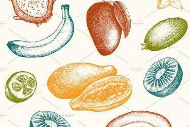 18个多种水果素描AI素材