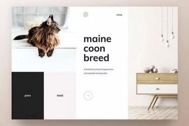 优秀的网页设计排版和配色欣赏