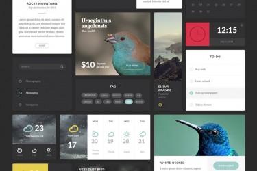 常用网页开发ui设计组件