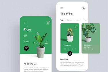 绿色植物app界面设计作品赏析