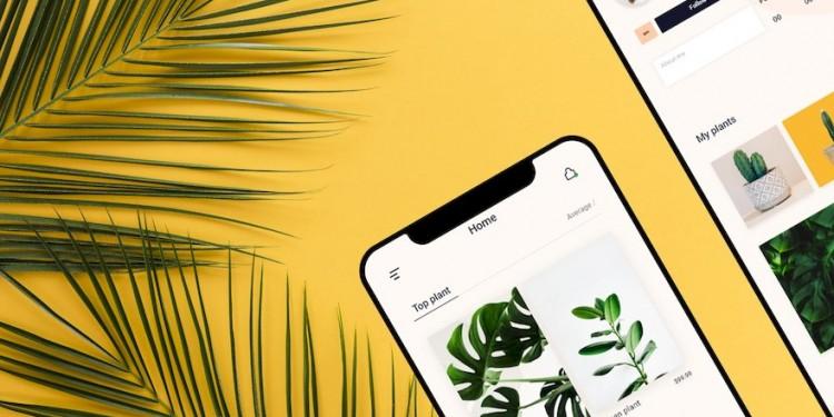 简洁的购买植物app ui设计模板