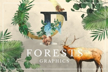 230个森林主题的手绘插画素材