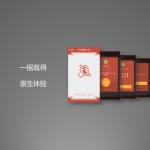 2015产品经理大会干货总结-微信红包产品策划